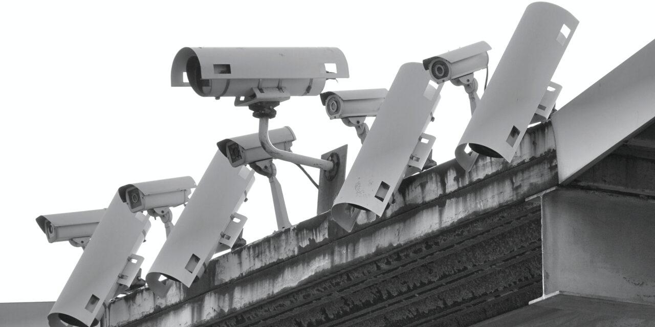 Big Brother | Gehirn Offline